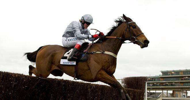 Invictus: Will gallop at Newbury