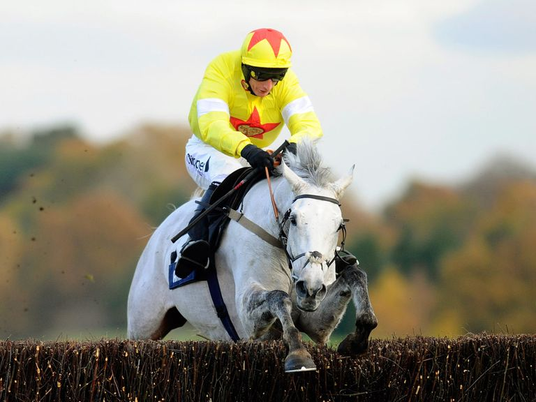 Al Ferof: One of the key players in Thursday's Ryanair Chase