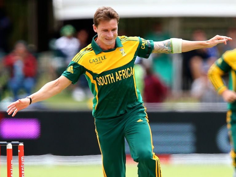 Dale Steyn: Will miss South Africa's next two T20 games