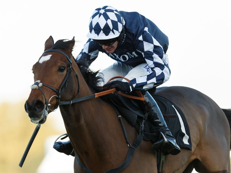 Irving: Favourite for this year's Sky Bet Supreme Novices' Hurdle