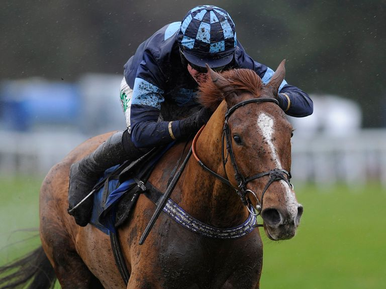 Melodic Rendezvous: May not run at Cheltenham