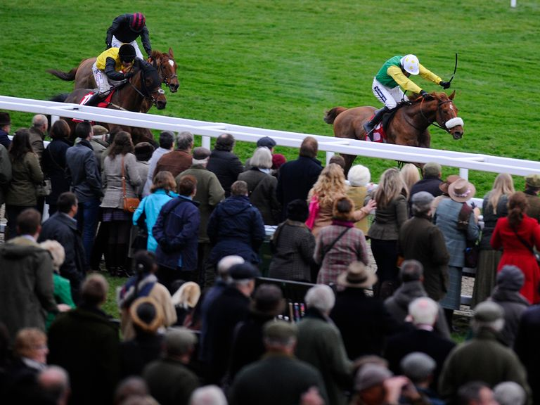 Quick Jack: A convincing winner at Cheltenham