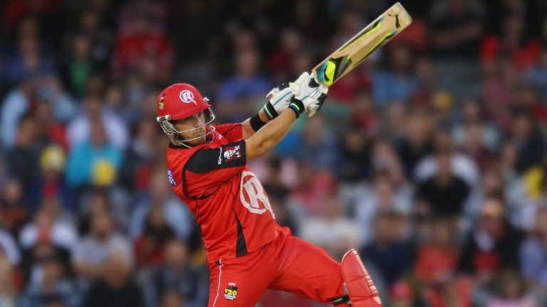 Aaron Finch: Hit 81 off 51 balls