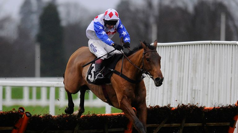 Reve De Sivola: Struggled in the World Hurdle