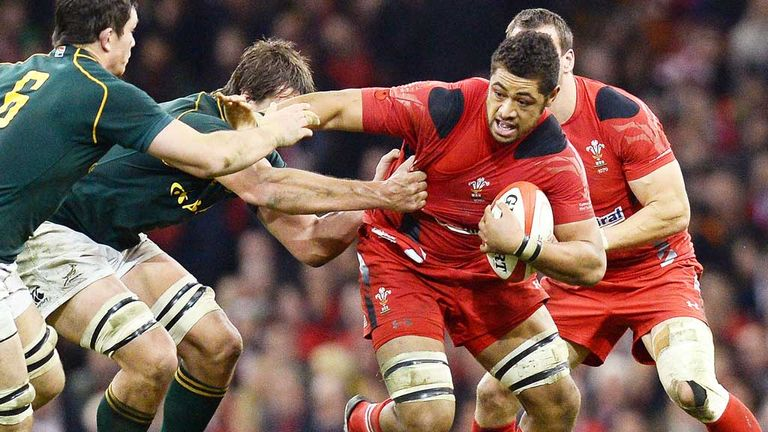 Wales will play South Africa at home again next autumn
