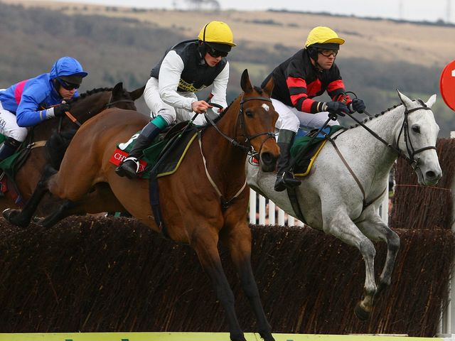 Baby Run: Bids to defy sizeable absence in Becher Chase