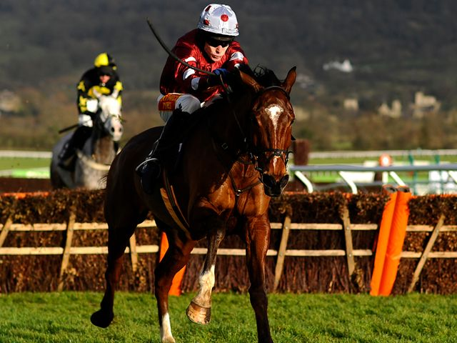 Kings Palace: Impressive winner at Cheltenham