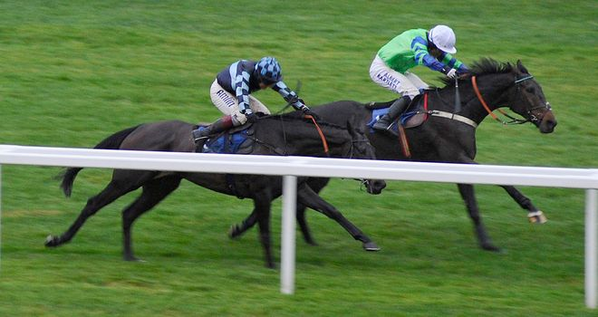 Ballyalton (white cap): Sets a stiff task for Racing Pulse