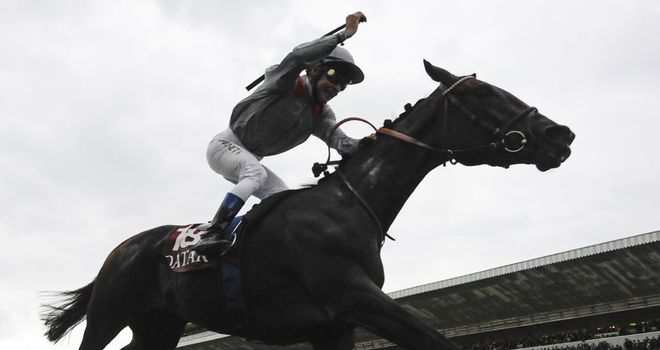 Treve: Will have a pacemaker this season