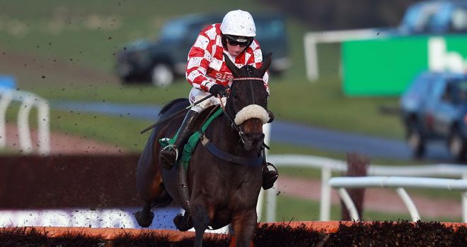 Deputy Dan: Will relish the underfoot conditions at Warwick