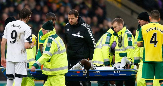 Nathan Dyer: Ligament damage for the Swansea winger