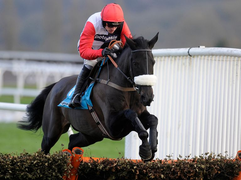 Big Buck's: Set to return to Exeter for a racecourse gallop
