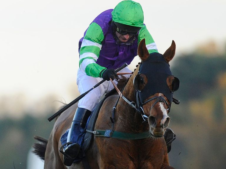 Night Alliance: Worth a bet in the Peter Marsh Chase