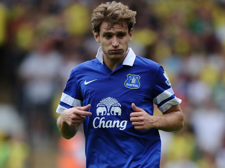 Nikica Jelavic: Interesting clubs in Britain and abroad