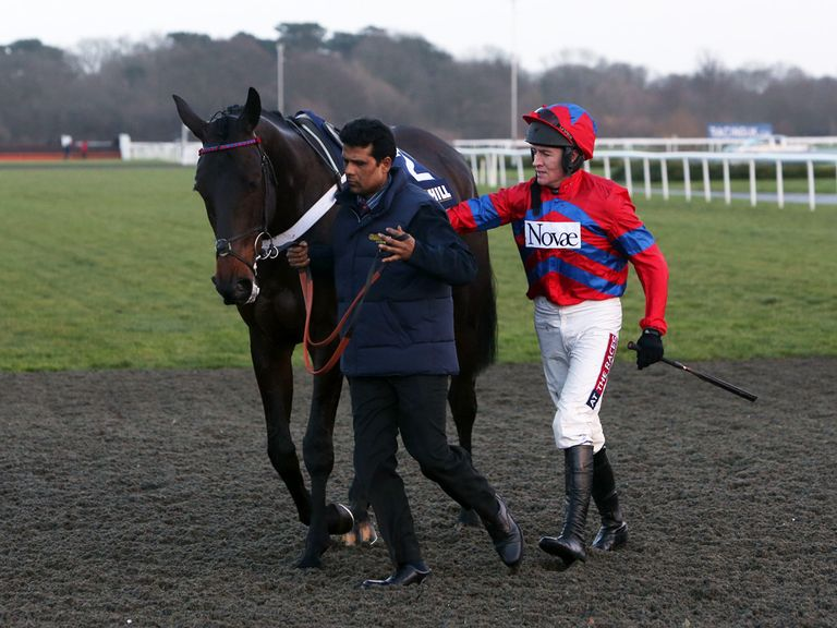 Sprinter Sacre: Pleased in a canter