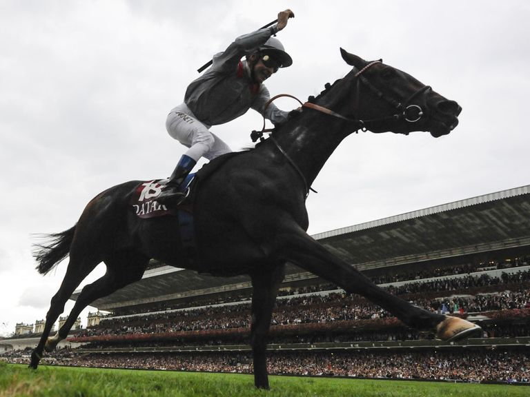 Treve winning the Prix de l'Arc de Triomphe last year
