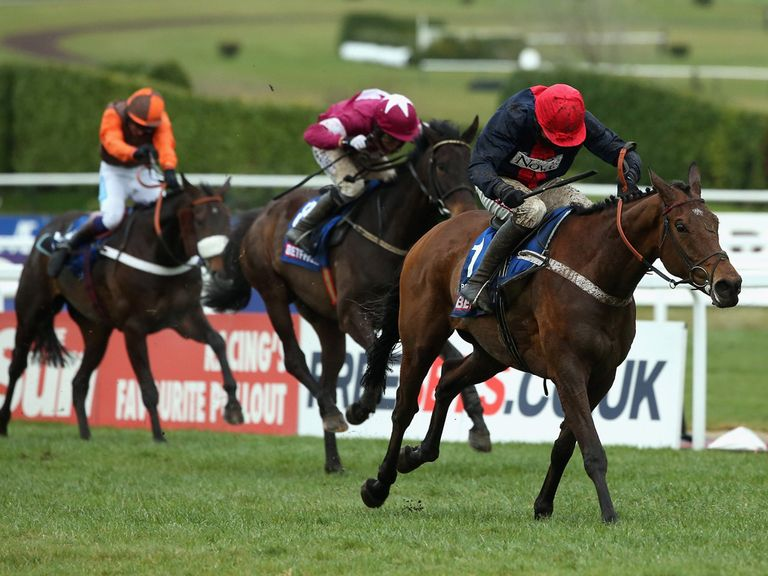Bobs Worth: Lexus Chase hopeful