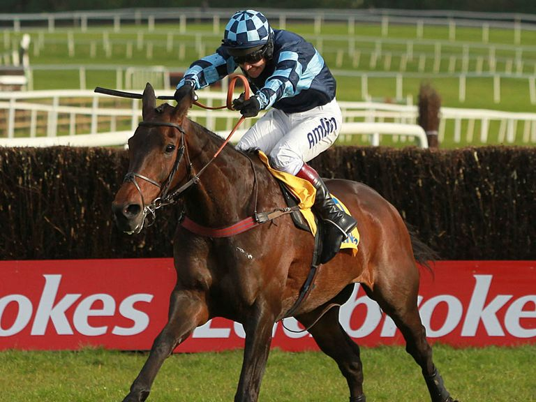 Captain Chris: Fancied to win at Kempton