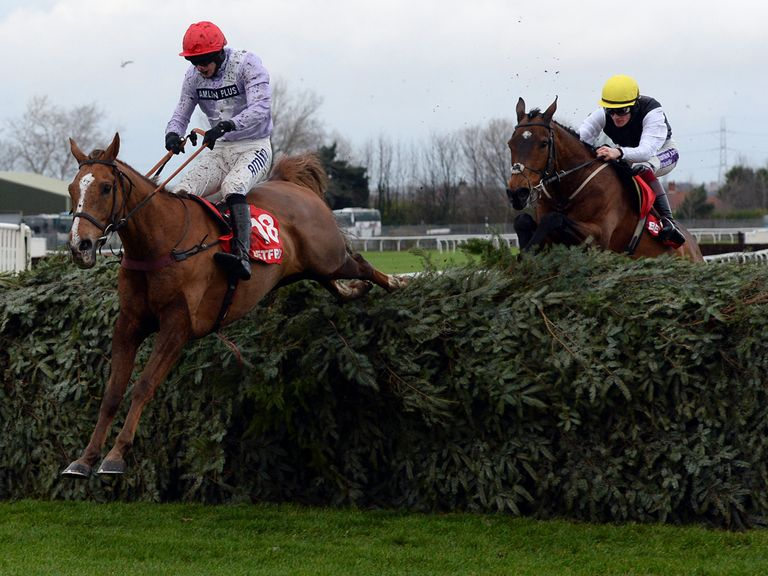 Baby Run (r): Ran a spectacular race in the Becher Chase