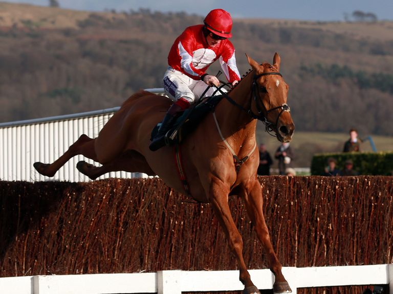 Double Ross: Could return to Cheltenham