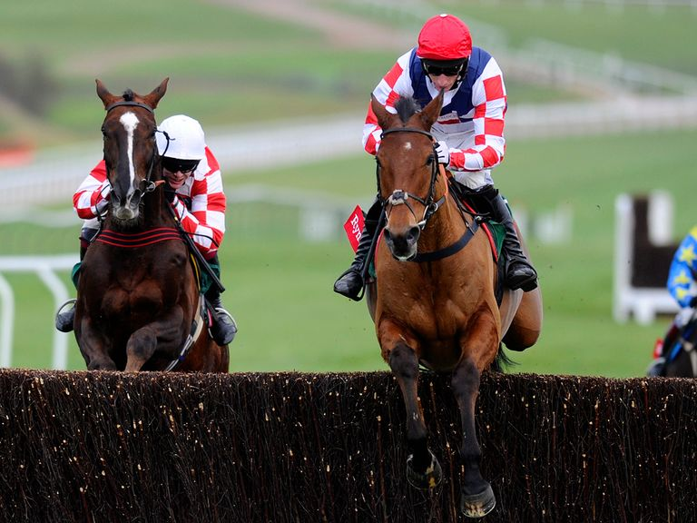 Sam Winner: Taken out of the National Hunt Chase