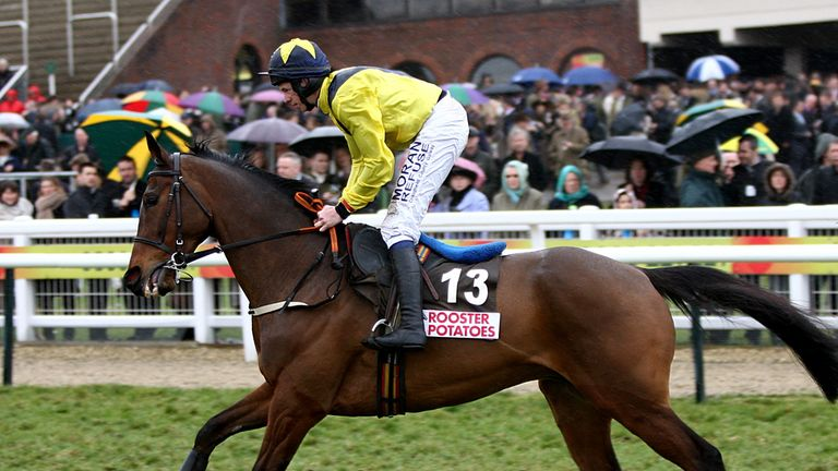 Shinrock Paddy: Has been retired