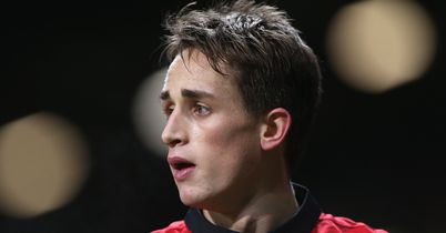 Albania try for Januzaj