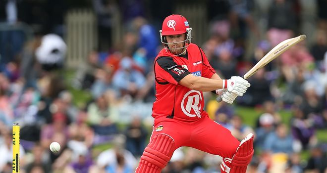 Aaron Finch: Top-scored for the Melbourne Renegades with a half century