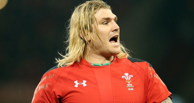 Richard Hibbard: Believes Wales can become one of the best teams in the world