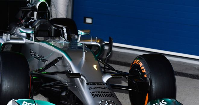 Nose detail on the W05