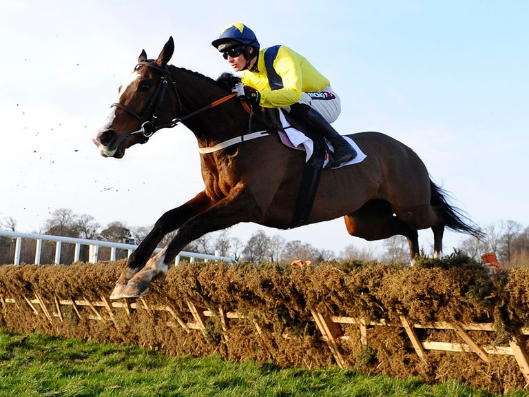 Our Conor: All roads now lead to the Champion Hurdle