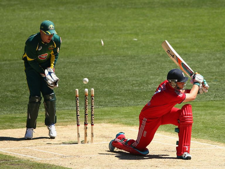 Brad Haddin: Watches the wicket of Ian Bell tumble
