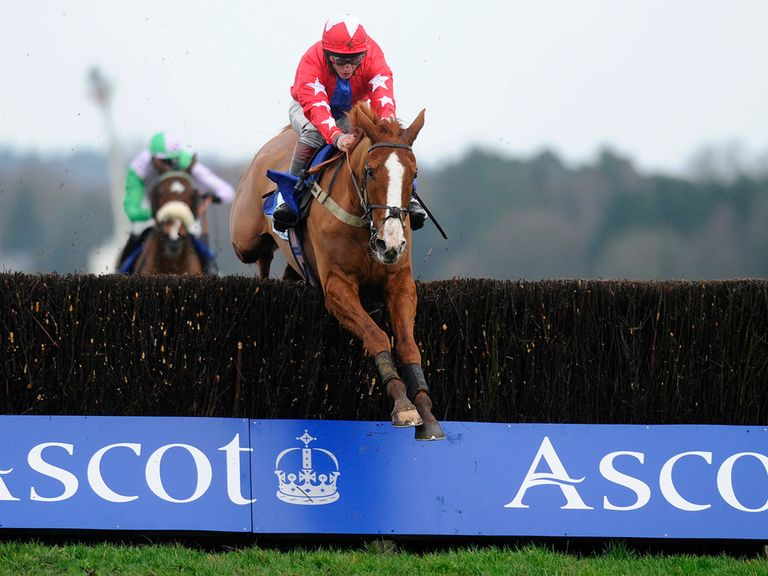 Sire De Grugy: Impressed the layers at Ascot