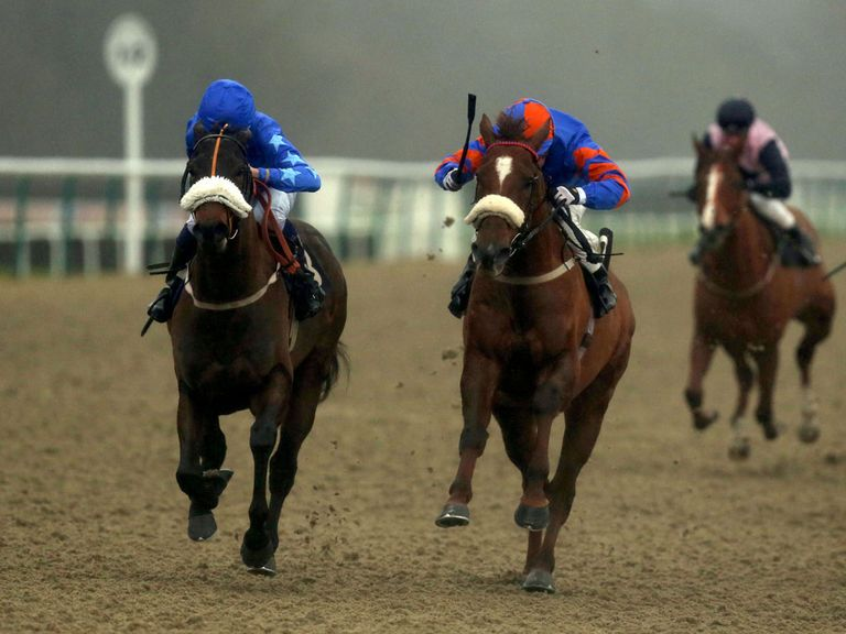 Lingfield: Stages a seven-race card this afternoon