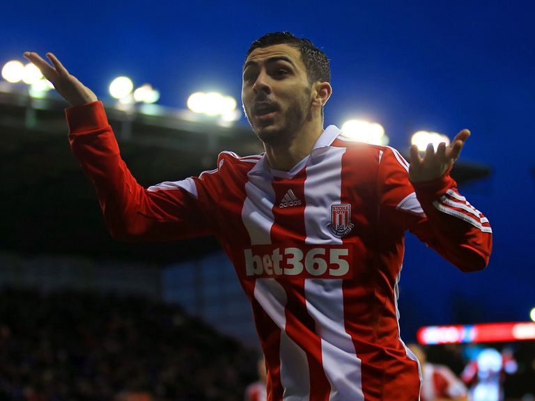 Oussama Assaidi celebrates his goal for Stoke against Everton.