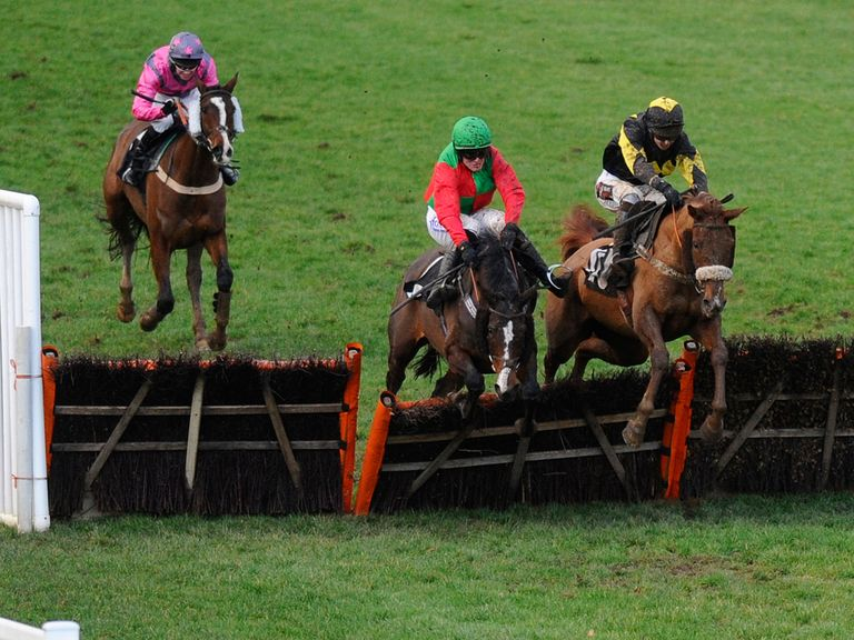 Brendan and Virginia Ash (right) on their way to victory at Plumpton