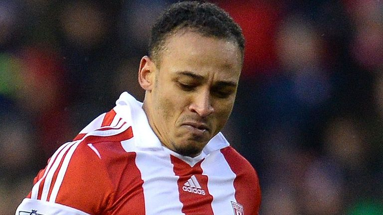 Peter Odemwingie: Mark Hughes happy with how he has settled in