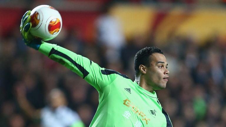 Michel Vorm: Has agreed personal terms with Tottenham