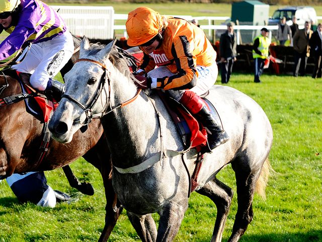 Medermit: Returns at Ascot