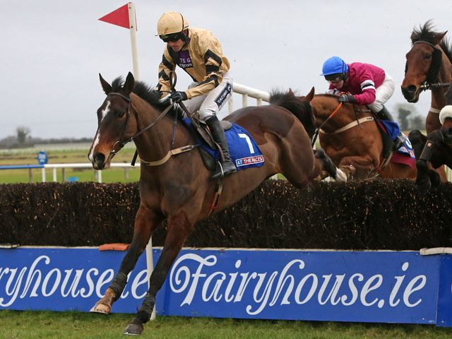 On His Own: An impressive round of jumping at Fairyhouse