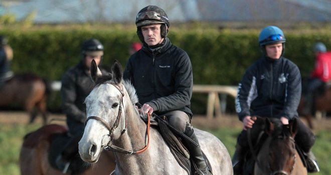 Champagne Fever: Bids to make winning return to Prestbury Park
