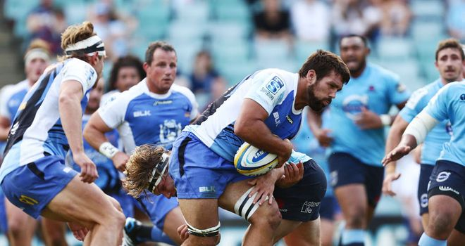 Chris Alcock: Returns to the Western Force XV
