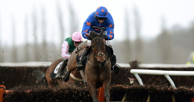 Calipto: 10/1 for the Triumph Hurdle with Sky Bet