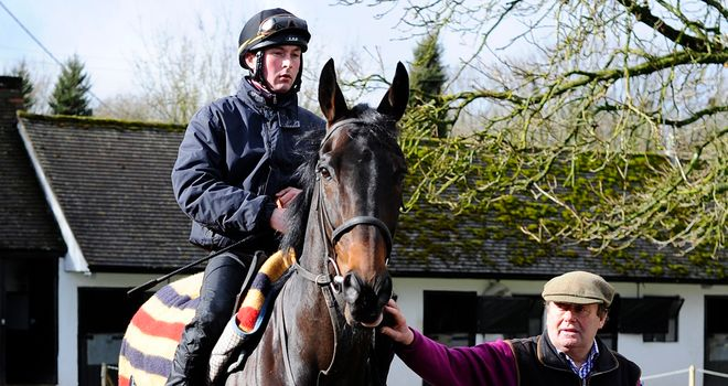 Sprinter Sacre looking 'mighty fine' with his trainer
