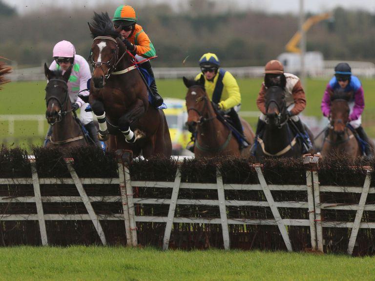 Gerdago (r): Set to run at Cheltenham