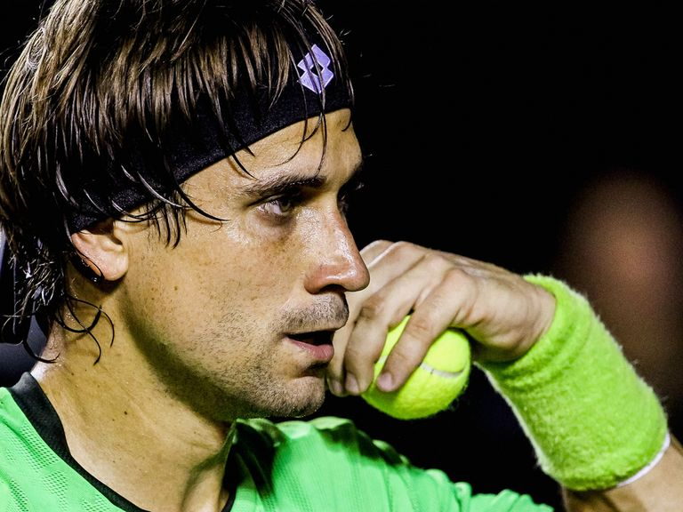 David Ferrer: Through to the next round