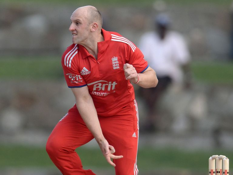 James Treadwell: Joined Sussex on loan