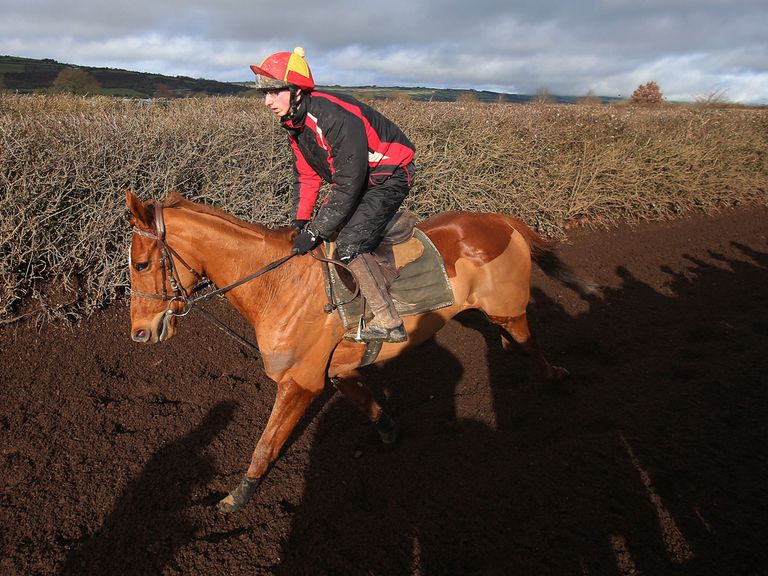 Annie Power: No indication over her Cheltenham target