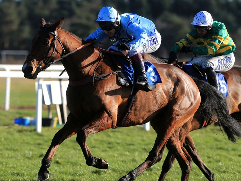 Fingal Bay: Carries top-weight in the Pertemps Network Handicap Hurdle