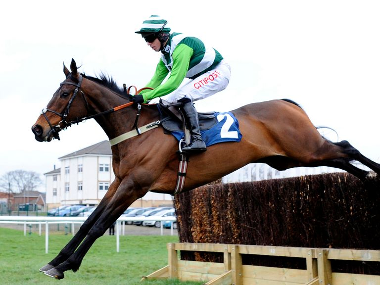 Rock On Ruby: Looks the bet for the Arkle
